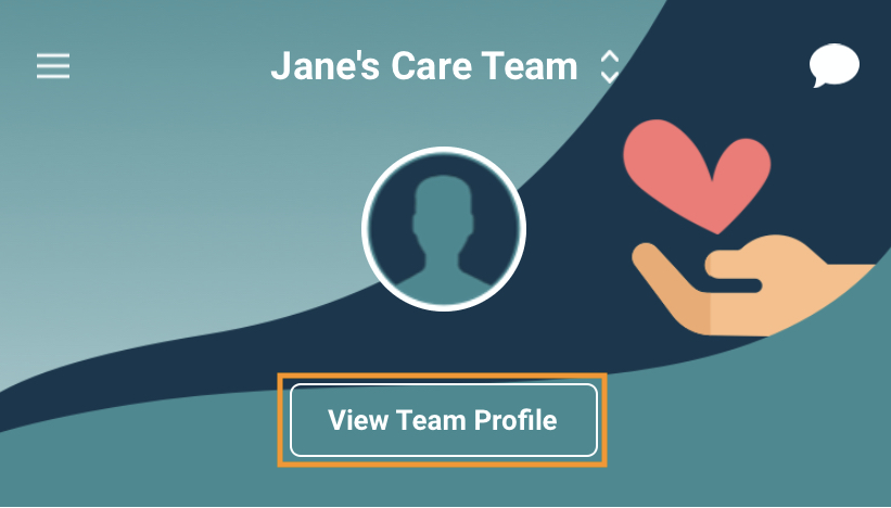 View_Team_Profile_New.png
